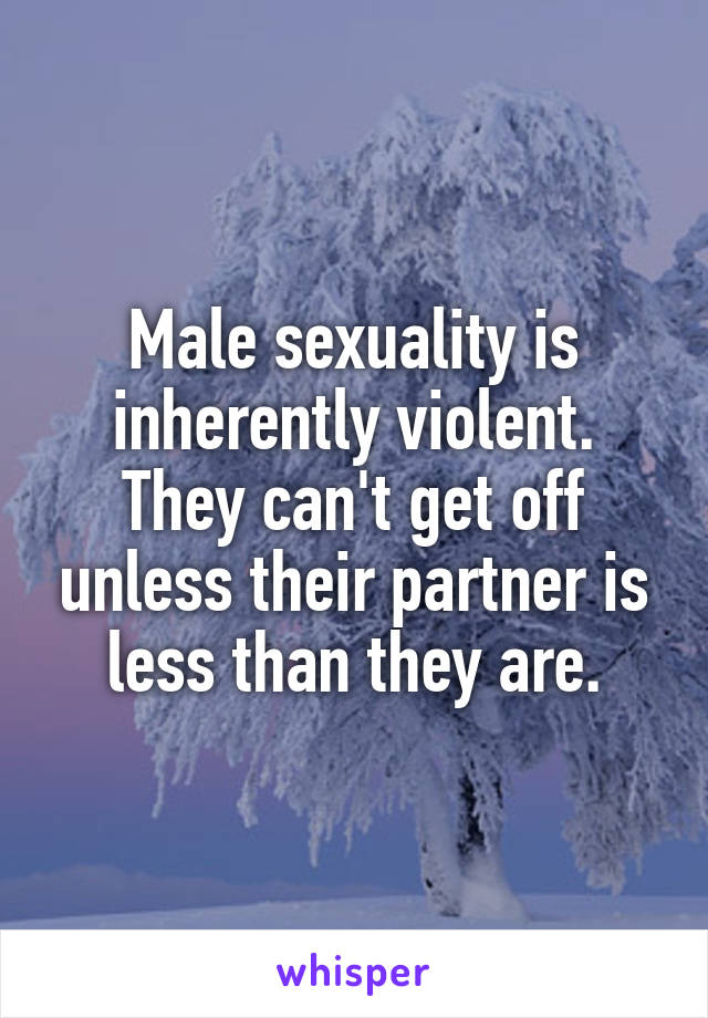 Male sexuality is inherently violent. They can't get off unless their partner is less than they are.
