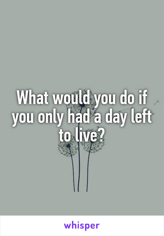 What would you do if you only had a day left to live?
