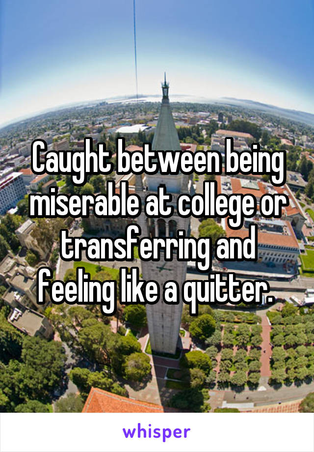 Caught between being miserable at college or transferring and feeling like a quitter.