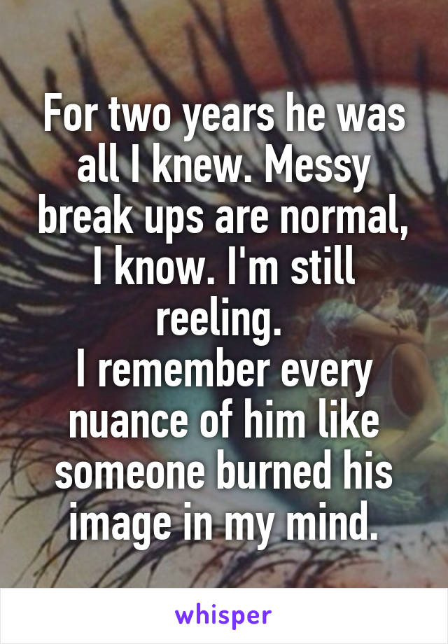 For two years he was all I knew. Messy break ups are normal, I know. I'm still reeling.  I remember every nuance of him like someone burned his image in my mind.