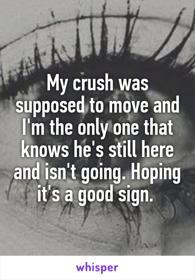 My crush was supposed to move and I'm the only one that knows he's still here and isn't going. Hoping it's a good sign.