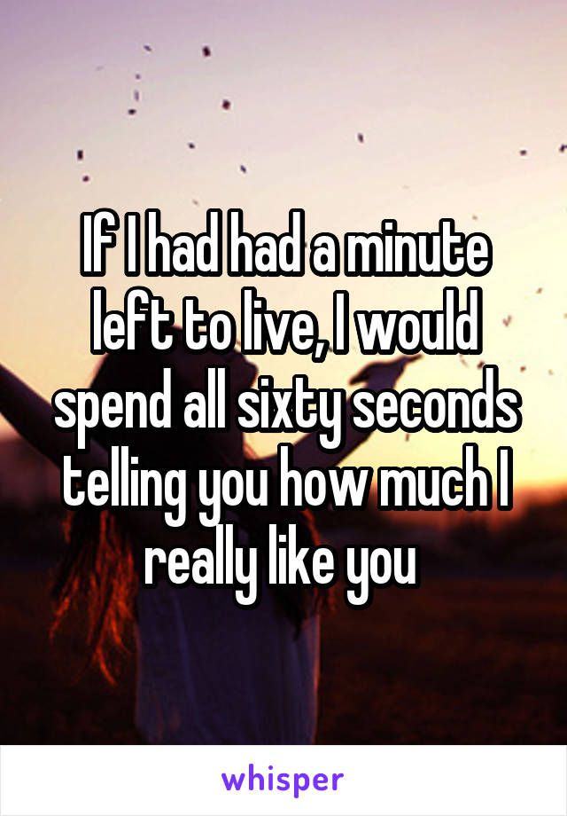 If I had had a minute left to live, I would spend all sixty seconds telling you how much I really like you