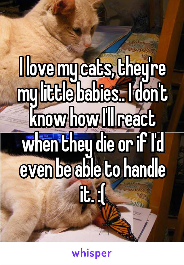 I love my cats, they're my little babies.. I don't know how I'll react when they die or if I'd even be able to handle it. :(