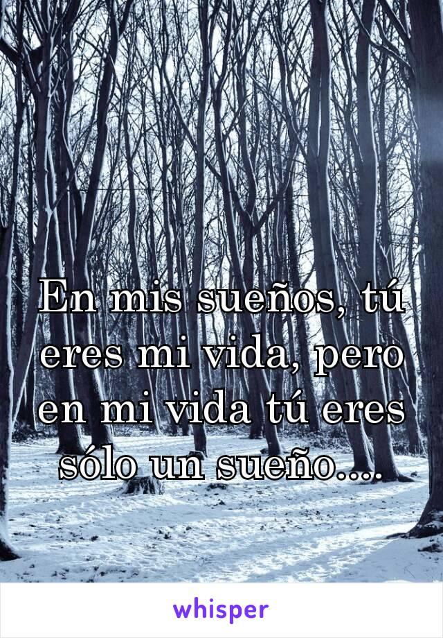 En mis sueños, tú eres mi vida, pero en mi vida tú eres sólo un sueño....