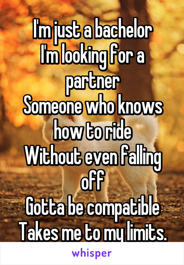 I m just a bachelor looking for a partner