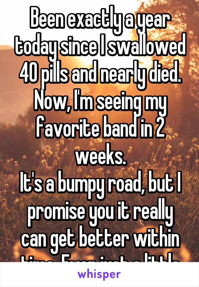 Been exactly a year today since I swallowed 40 pills and nearly died. Now, I'm seeing my favorite band in 2 weeks. It's a bumpy road, but I promise you it really can get better within time. Even just a little
