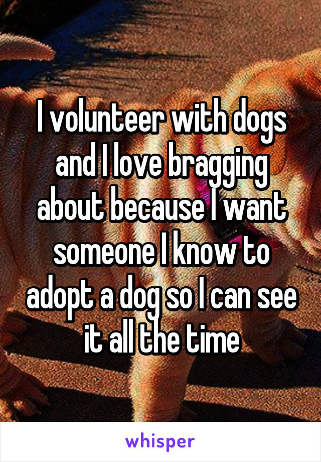 I volunteer with dogs and I love bragging about because I want someone I know to adopt a dog so I can see it all the time