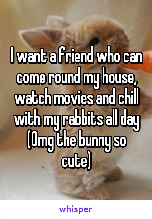 I want a friend who can come round my house, watch movies and chill with my rabbits all day (Omg the bunny so cute)