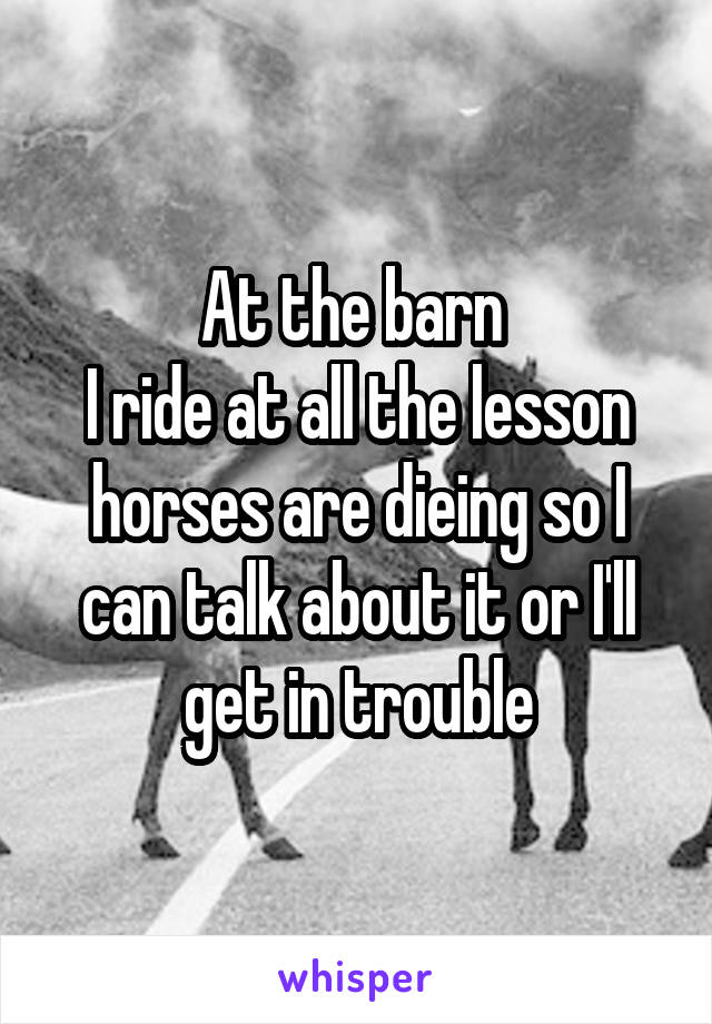 At the barn  I ride at all the lesson horses are dieing so I can talk about it or I'll get in trouble