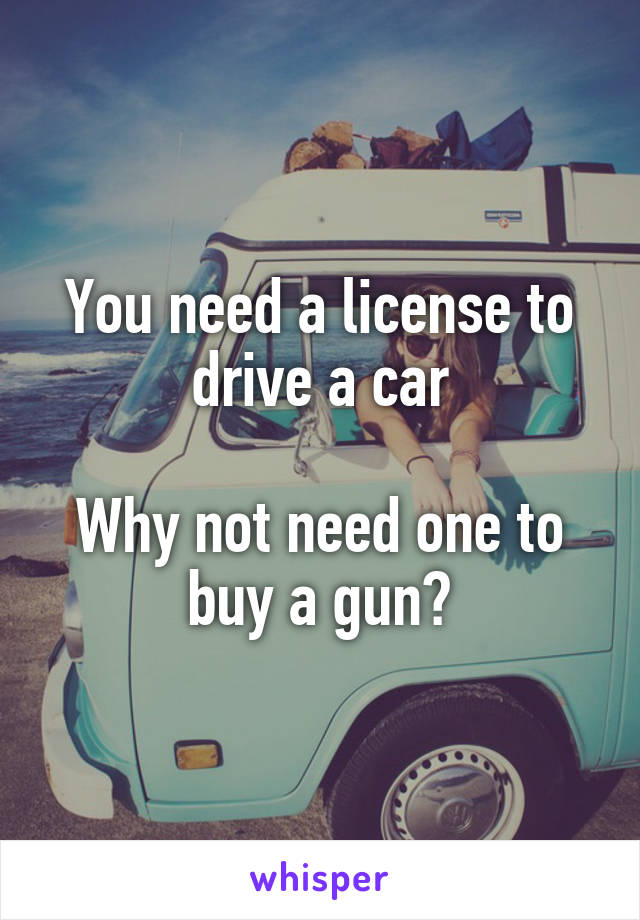 You need a license to drive a car  Why not need one to buy a gun?