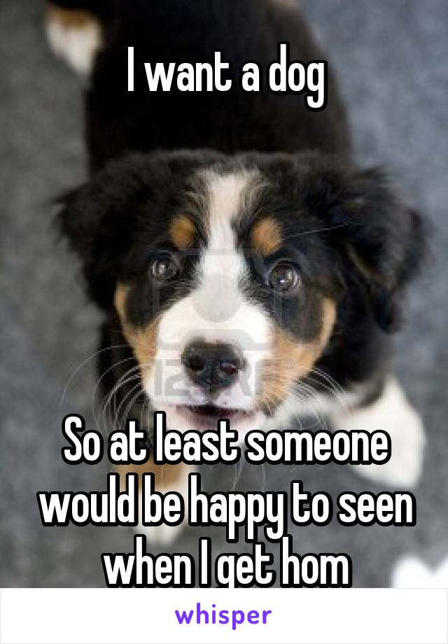 I want a dog      So at least someone would be happy to seen when I get hom