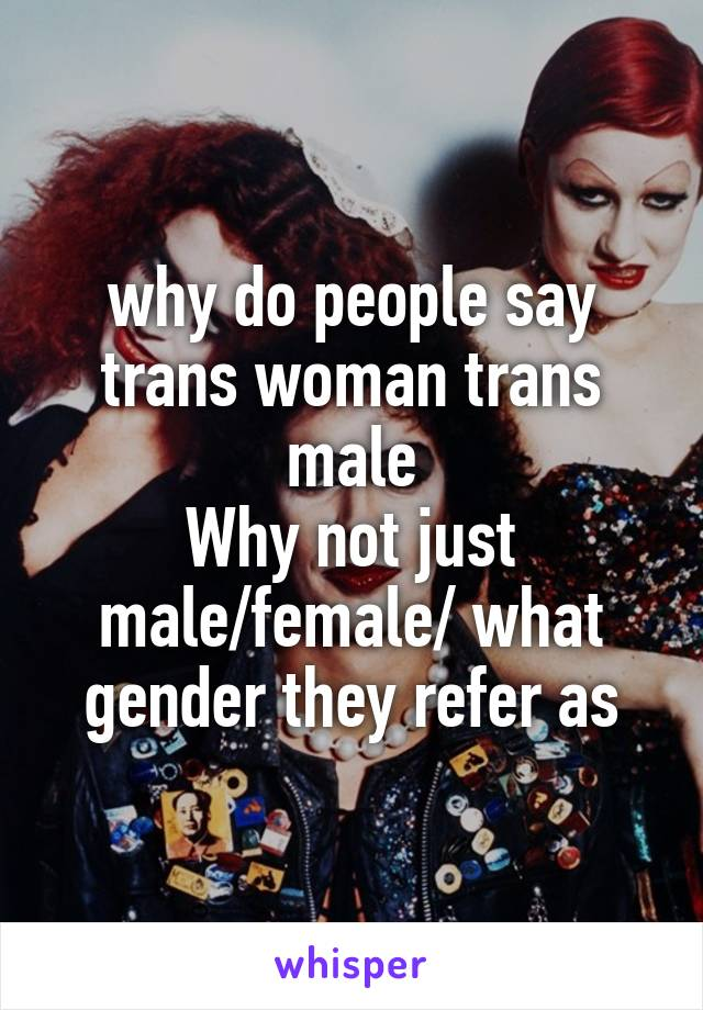 why do people say trans woman trans male Why not just male/female/ what gender they refer as