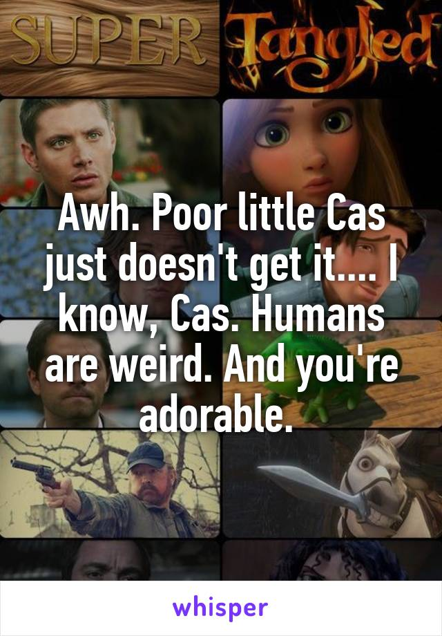 Awh. Poor little Cas just doesn't get it.... I know, Cas. Humans are weird. And you're adorable.