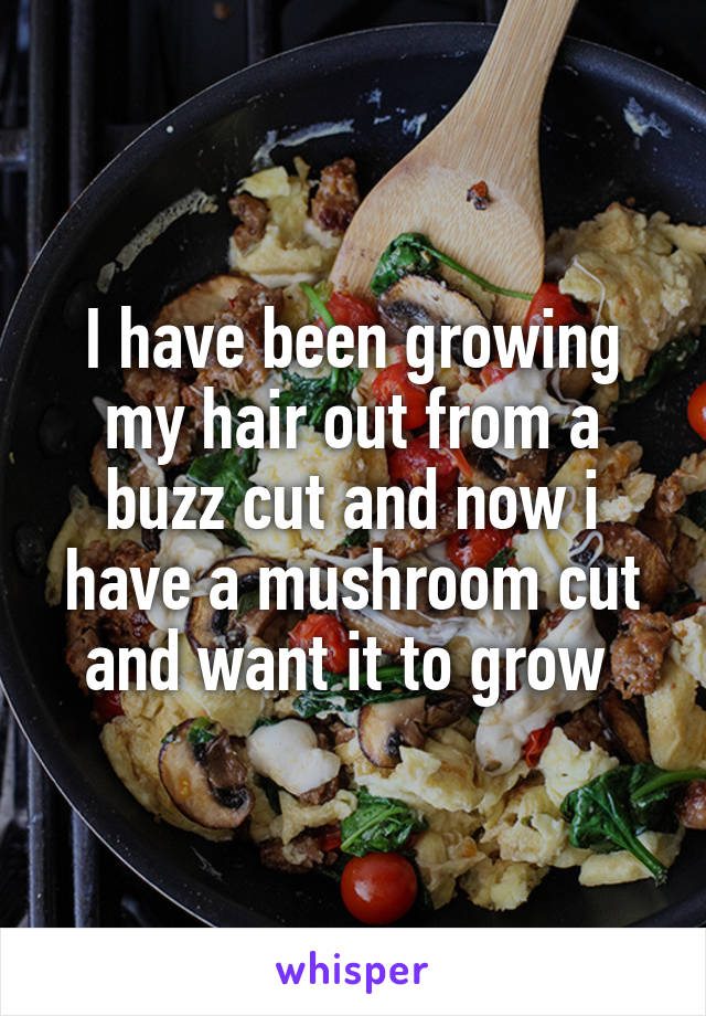 I have been growing my hair out from a buzz cut and now i have a mushroom cut and want it to grow