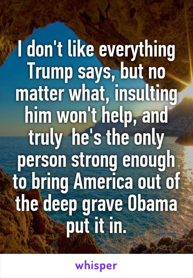 I don't like everything Trump says, but no matter what, insulting him won't help, and truly  he's the only person strong enough to bring America out of the deep grave Obama put it in.