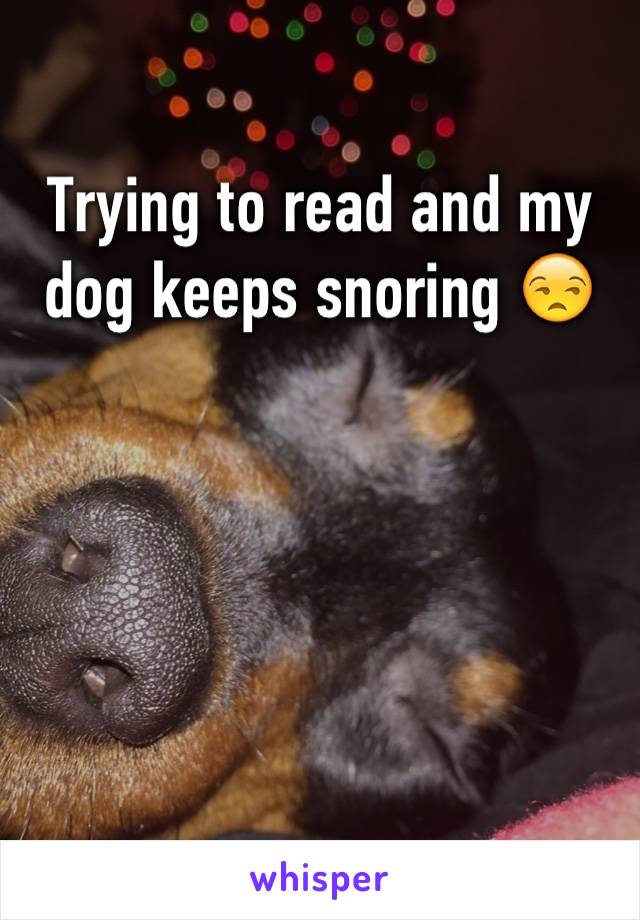 Trying to read and my dog keeps snoring 😒