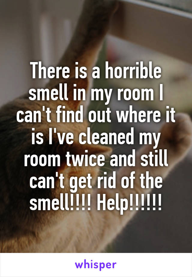 There is a horrible smell in my room I can't find out where it is I've cleaned my room twice and still can't get rid of the smell!!!! Help!!!!!!