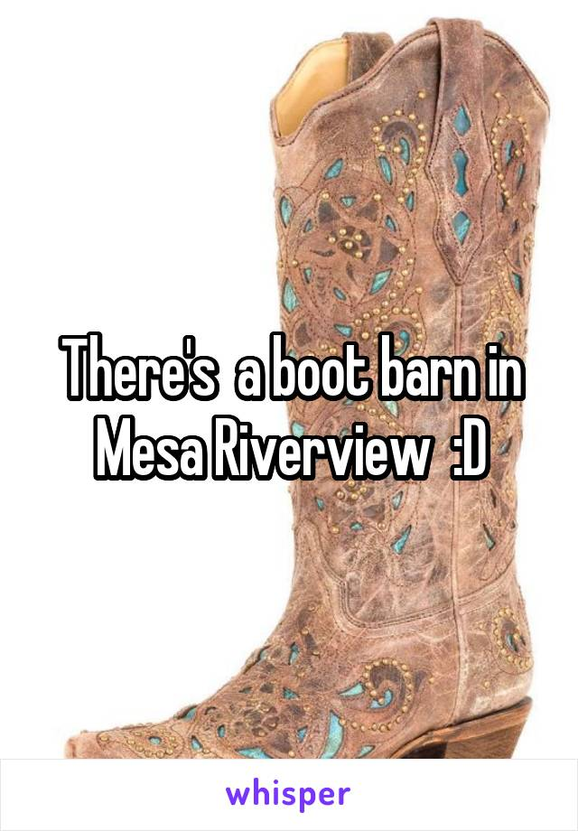 There S A Boot Barn In Mesa Riverview D