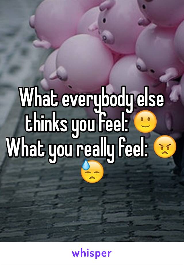 What everybody else thinks you feel: 🙂 What you really feel: 😠😓