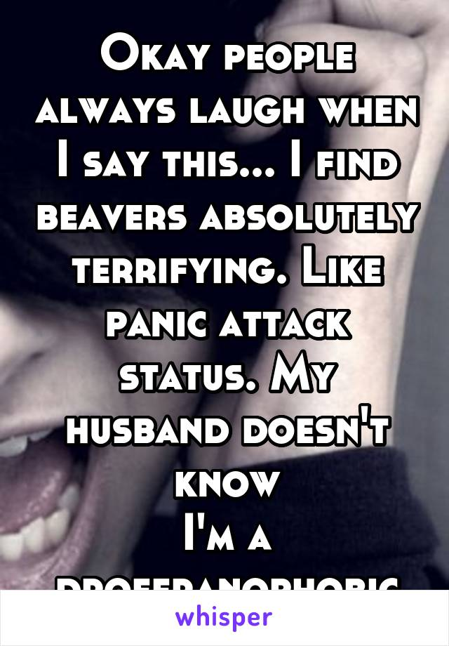 Okay people always laugh when I say this... I find beavers absolutely terrifying. Like panic attack status. My husband doesn't know I'm a droferanophobic