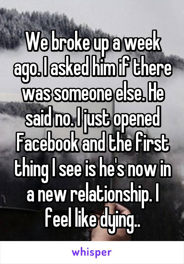 We broke up a week ago. I asked him if there was someone else. He said no. I just opened Facebook and the first thing I see is he's now in a new relationship. I feel like dying..
