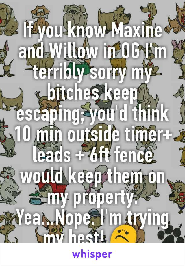 If you know Maxine and Willow in OG I'm terribly sorry my bitches keep escaping; you'd think 10 min outside timer+ leads + 6ft fence would keep them on my property. Yea...Nope. I'm trying my best! 😟