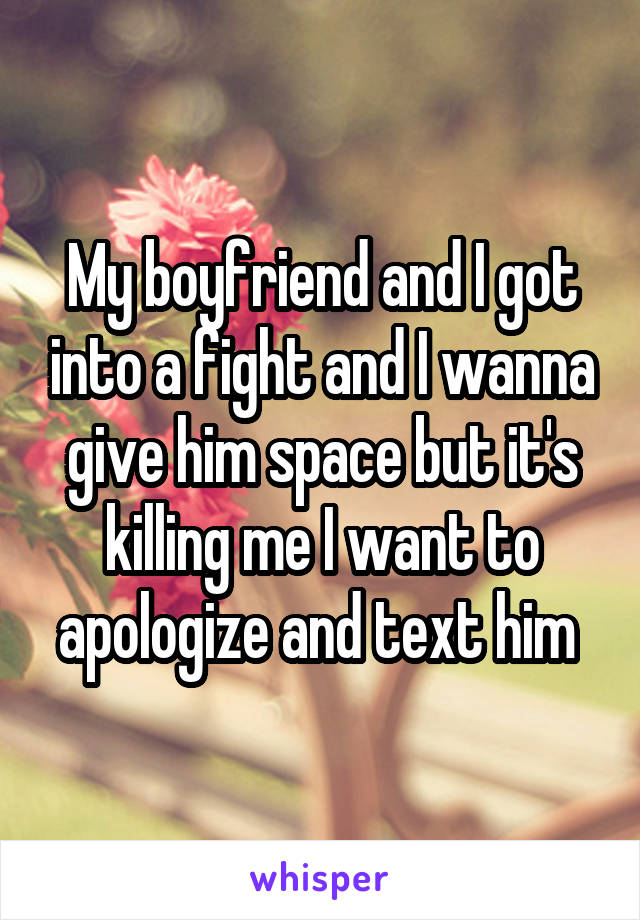 My boyfriend and I got into a fight and I wanna give him space but it's killing me I want to apologize and text him