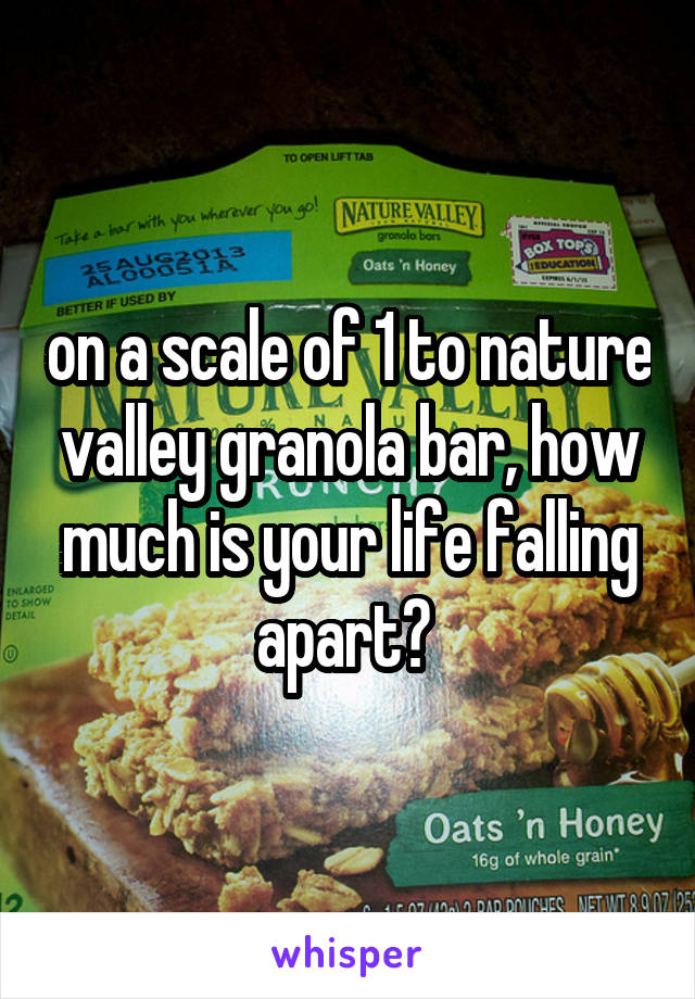 on a scale of 1 to nature valley granola bar, how much is your life falling apart?