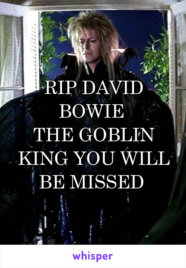 RIP DAVID BOWIE  THE GOBLIN KING YOU WILL BE MISSED