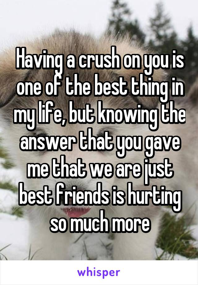 Having a crush on you is one of the best thing in my life, but knowing the answer that you gave me that we are just best friends is hurting so much more