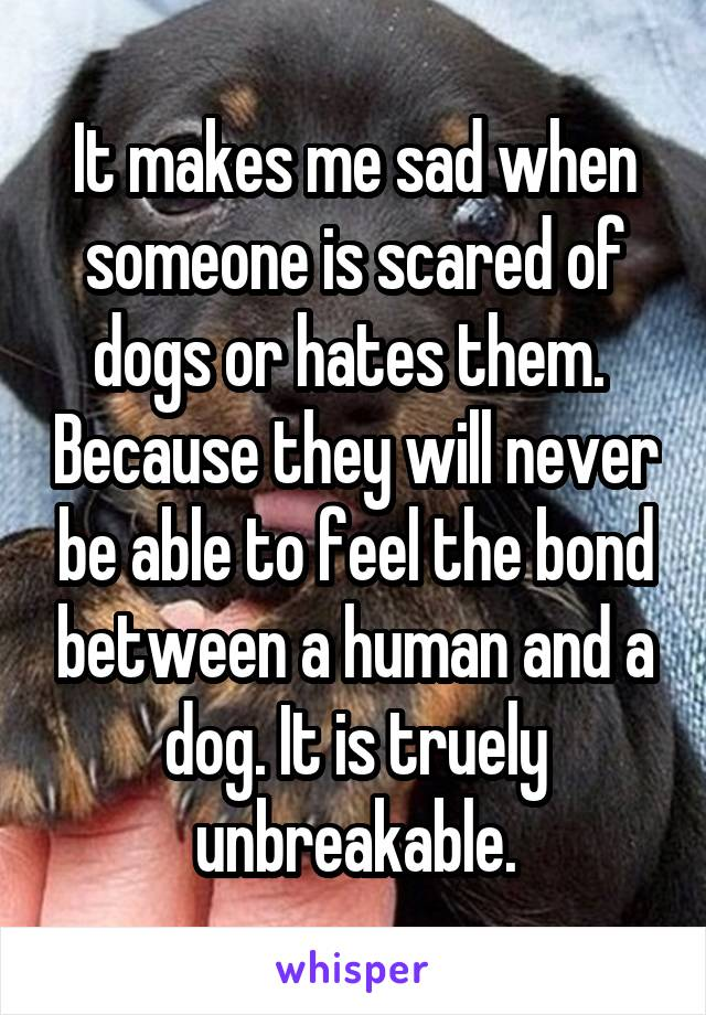 It makes me sad when someone is scared of dogs or hates them.  Because they will never be able to feel the bond between a human and a dog. It is truely unbreakable.