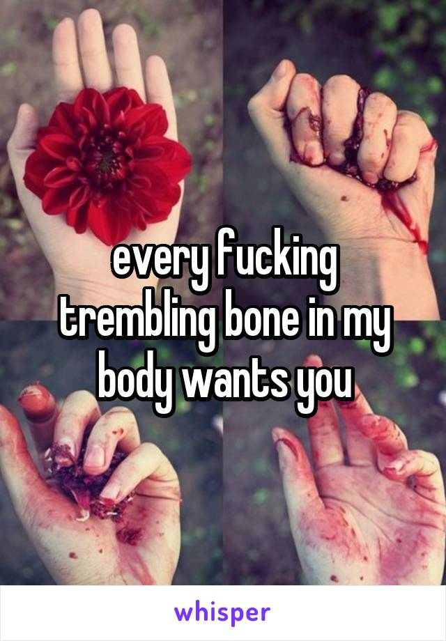 every fucking trembling bone in my body wants you
