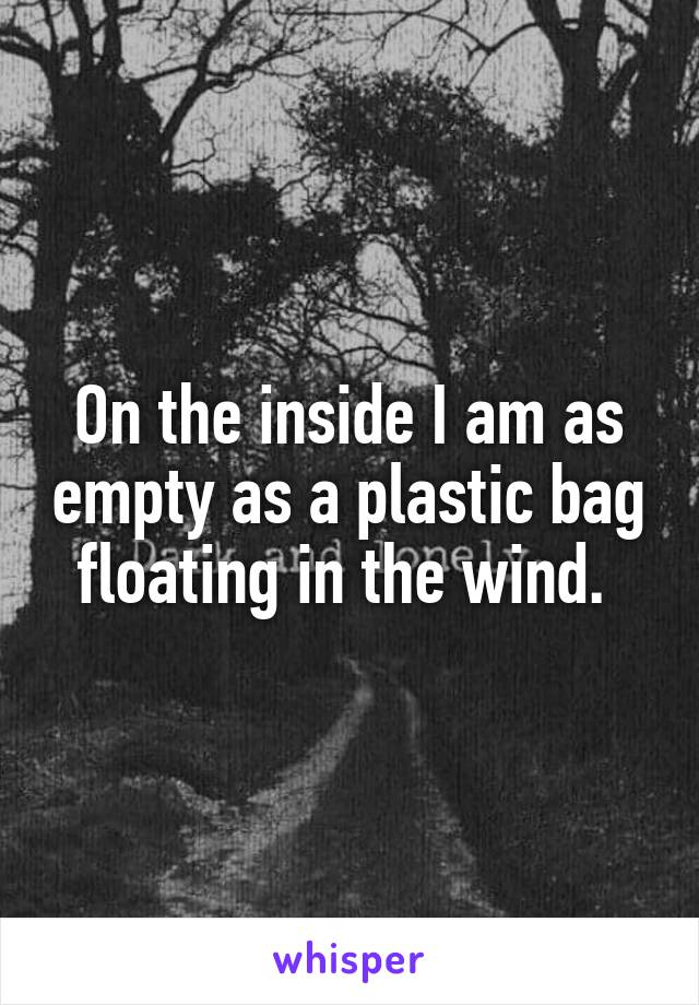 On the inside I am as empty as a plastic bag floating in the wind.