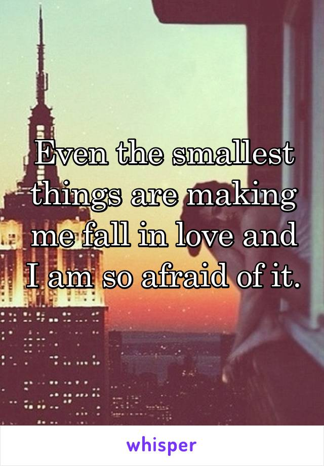 Even the smallest things are making me fall in love and I am so afraid of it.