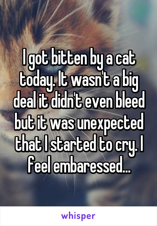 I got bitten by a cat today. It wasn't a big deal it didn't even bleed but it was unexpected that I started to cry. I feel embaressed...