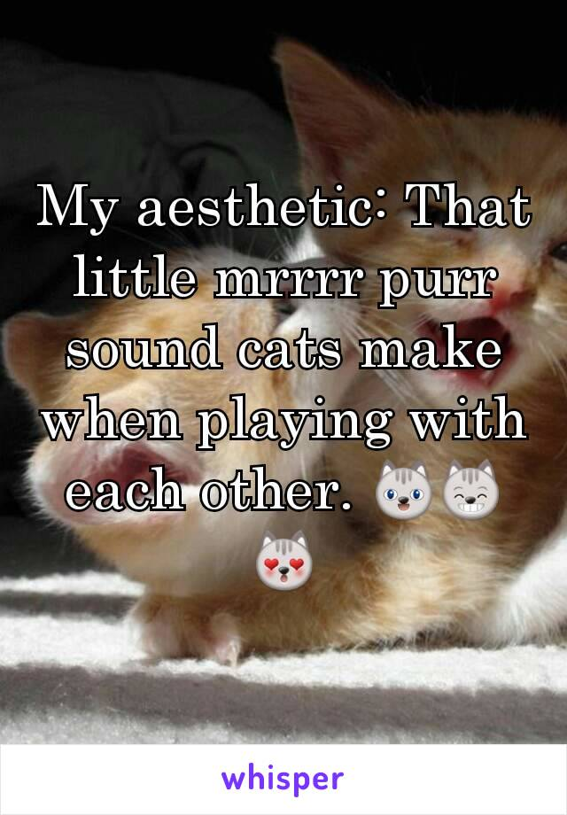 My aesthetic: That little mrrrr purr sound cats make when playing with each other. 😺😸😻