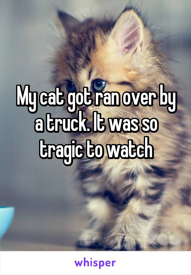 My cat got ran over by a truck. It was so tragic to watch