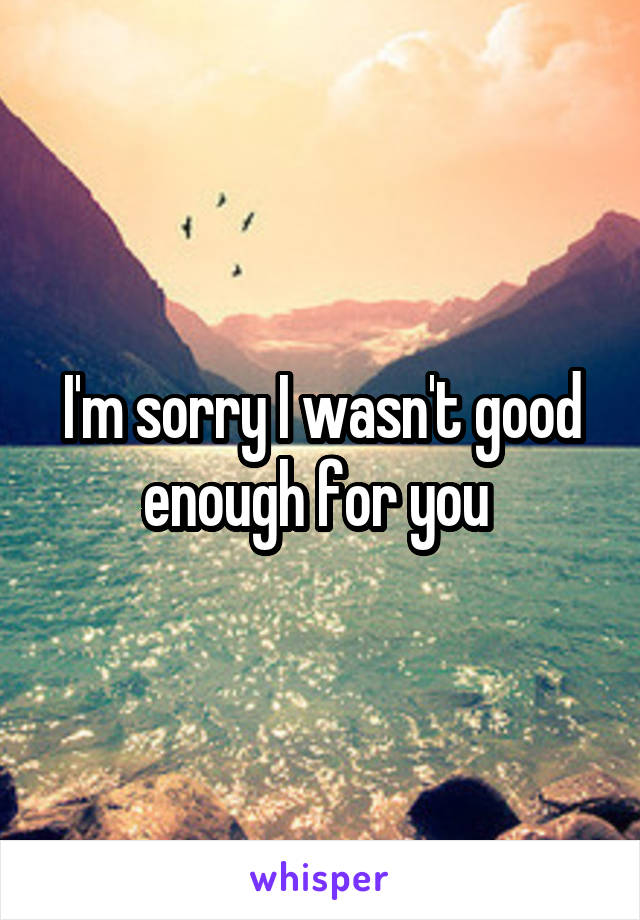 I'm sorry I wasn't good enough for you