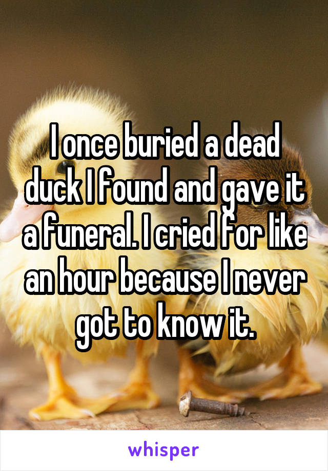 I once buried a dead duck I found and gave it a funeral. I cried for like an hour because I never got to know it.