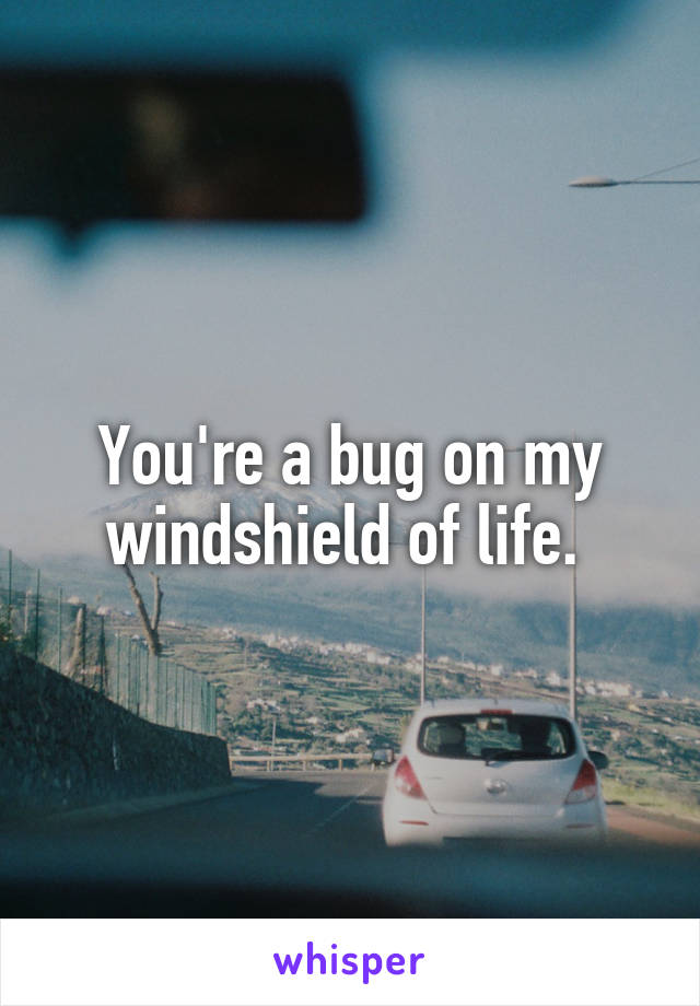 You're a bug on my windshield of life.