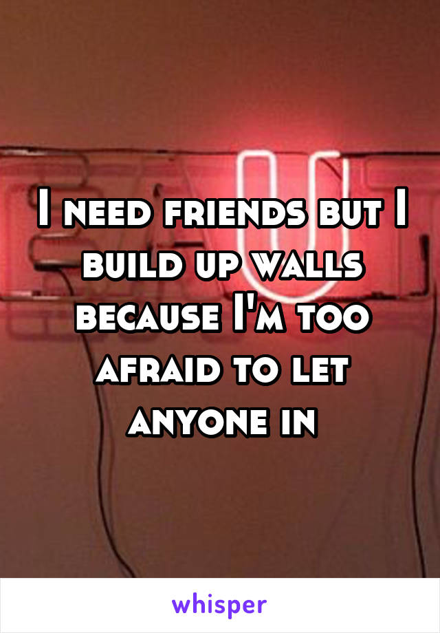 I need friends but I build up walls because I'm too afraid to let anyone in