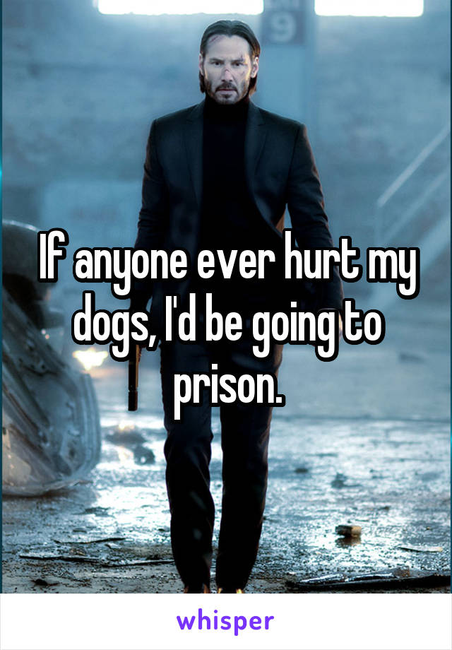 If anyone ever hurt my dogs, I'd be going to prison.