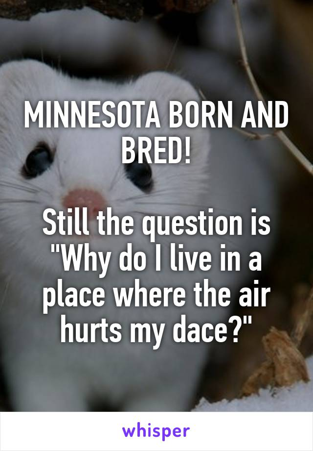 "MINNESOTA BORN AND BRED!  Still the question is ""Why do I live in a place where the air hurts my dace?"""