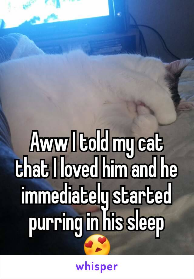 Aww I told my cat that I loved him and he immediately started purring in his sleep 😍