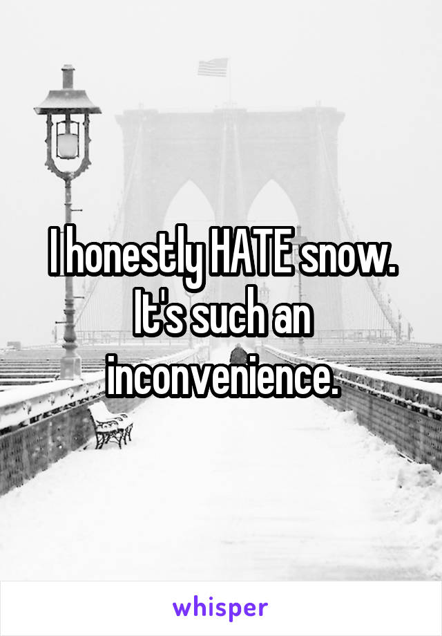 I honestly HATE snow. It's such an inconvenience.