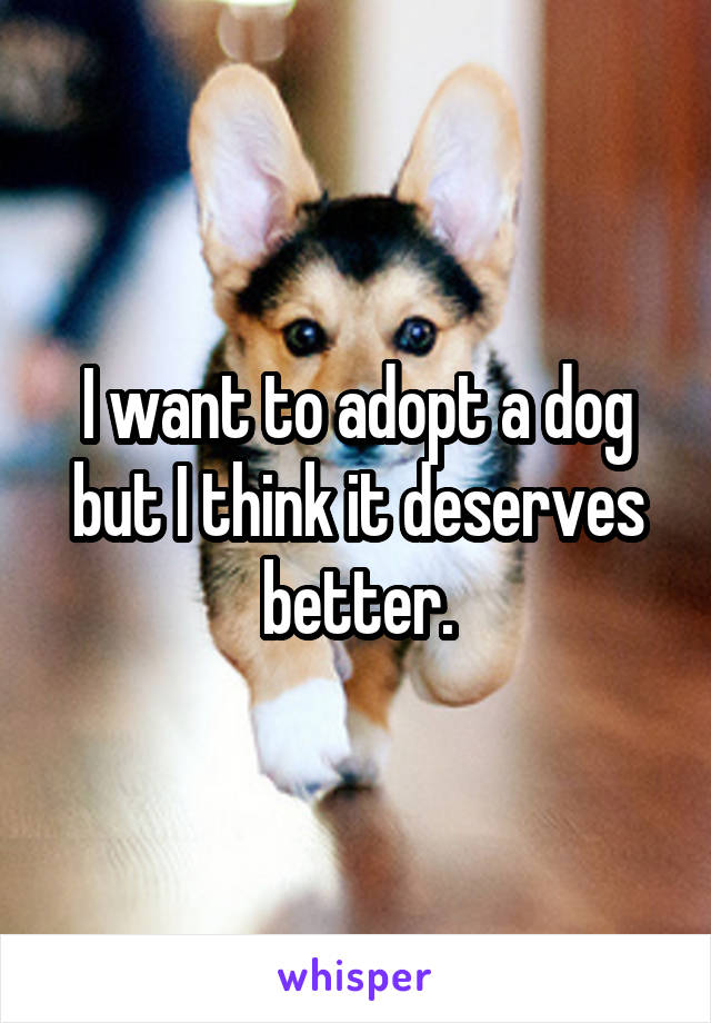 I want to adopt a dog but I think it deserves better.