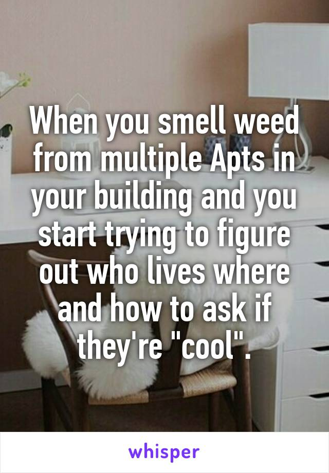 """When you smell weed from multiple Apts in your building and you start trying to figure out who lives where and how to ask if they're """"cool""""."""