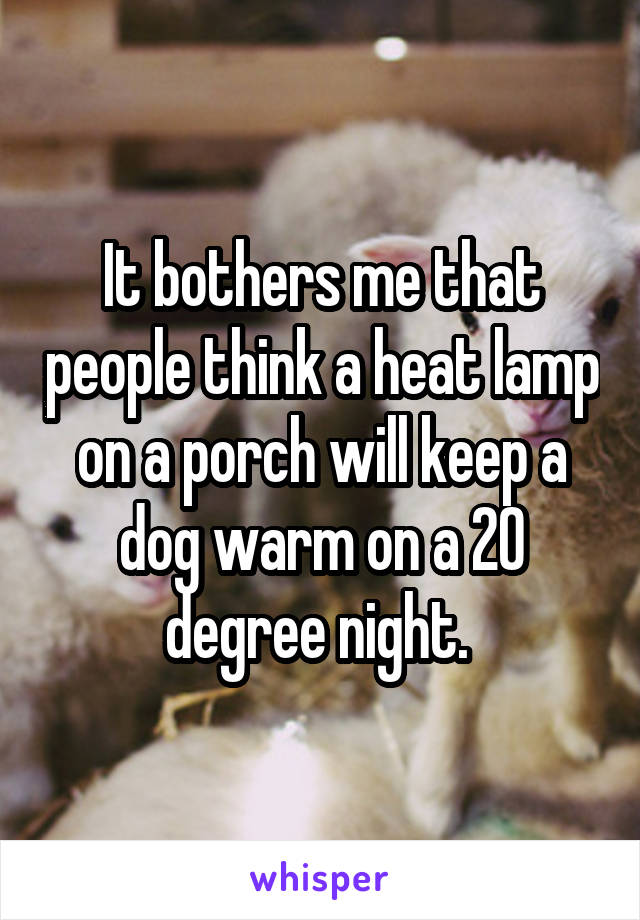 It bothers me that people think a heat lamp on a porch will keep a dog warm on a 20 degree night.