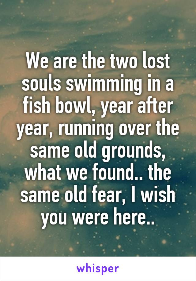 We are the two lost souls swimming in a fish bowl, year after year, running over the same old grounds, what we found.. the same old fear, I wish you were here..