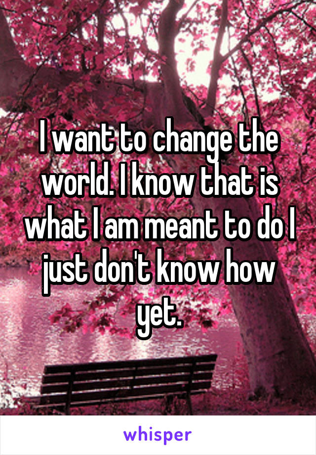 I want to change the world. I know that is what I am meant to do I just don't know how yet.